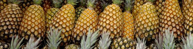 Zastosowanie ananasa w kosmetyce